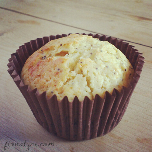 orange nectarine muffins