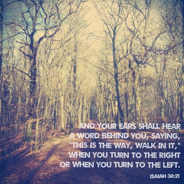 Isaiah 20:31