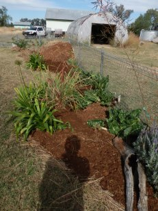 The new extended garden bed.
