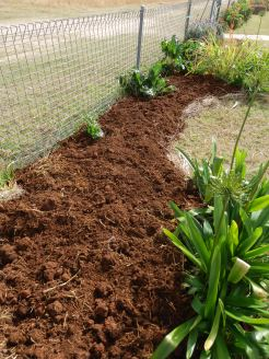 Then soil on top.