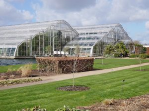 RHS Wisley glasshouses. Photo by Fiona Parrott