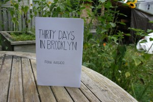thirty_days_in_brooklyn_store