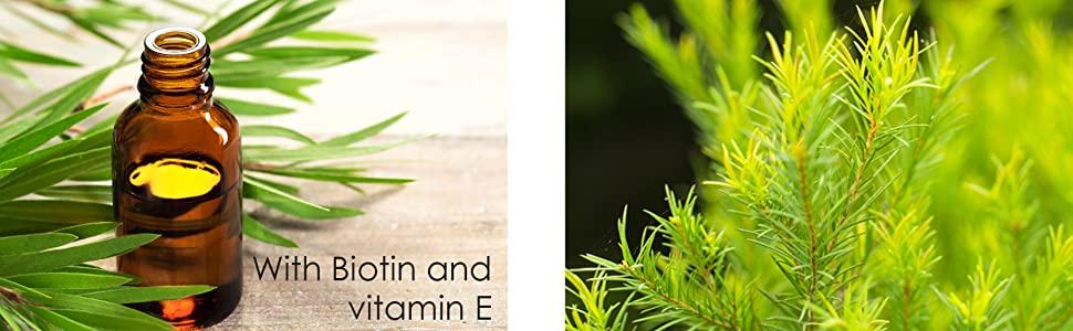Majestic Pure tea tree oil shampoo natural essential pure paraben free dandruff dry scalp