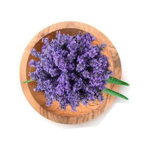 lavender scented shampoo lavender shampoo and conditioner tea tree lavender mint shampoo