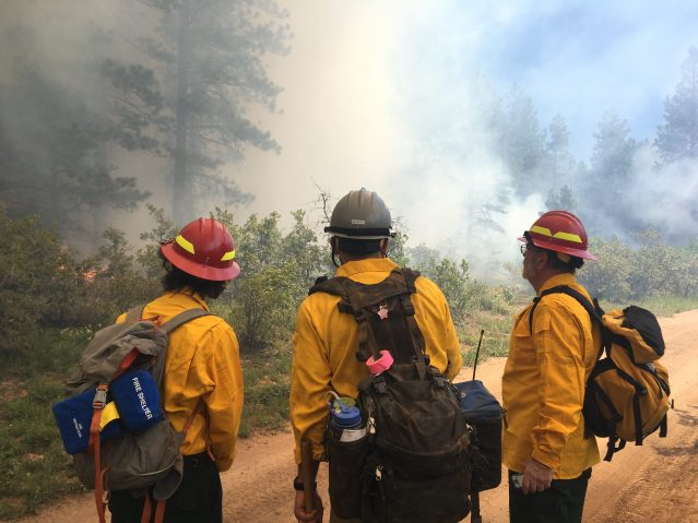 The DWRF Coordinator and a Neighborhood Ambassador stand shoulder to shoulder with a Dolores Ranger District Fire Lighter during a broadcast burn on a 'Boggy Draw' unit on June 9, 2019. Photo courtesy of Wildfire Adapted Partnership.