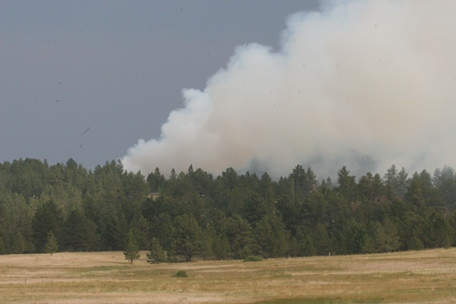 Highlands Fire