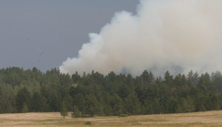 Report released on MAFFS air tanker crash - Fire Aviation