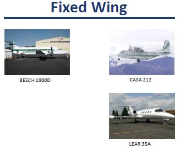 Evergreen fixed wing
