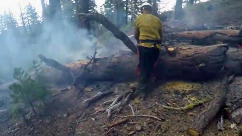 Smokejumper operates chain saw
