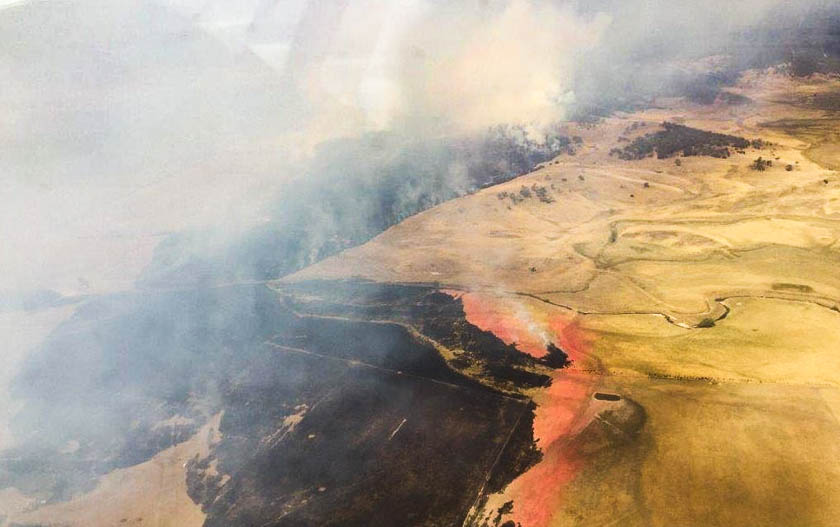 Carwoola Fire NSW RFS retardant