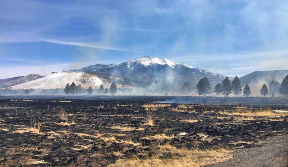 Drone lands, catches fire, ignites wildfire