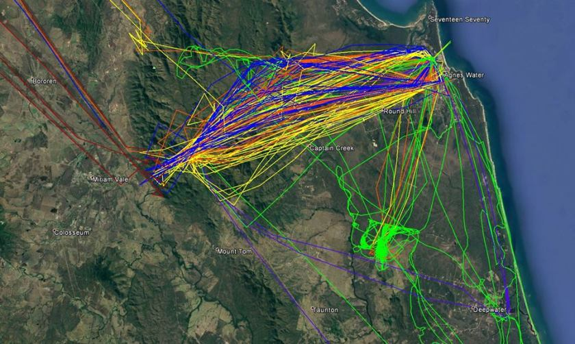 air tanker tracking queensland australia