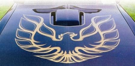 The Iconic Firebird on the Hoods of Trans Am  National Firebird