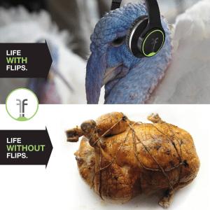 flips-turkey