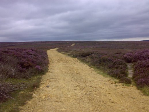 Over the wiley, windy moors…