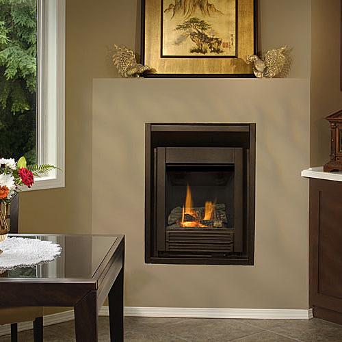 Valor Portrait  Freestyle  The Fireplace King Huntsville Ontario Muskoka  For Your Heating