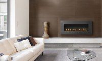 Napoleon Plazmafire 48 - WHD48 Direct Vent Gas Fireplace ...