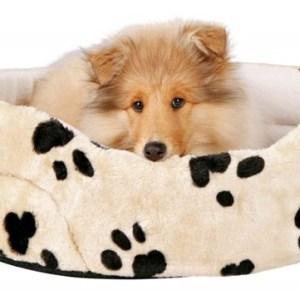 Hundeseng model Charlie, beige med poter, 79 x 70 cm