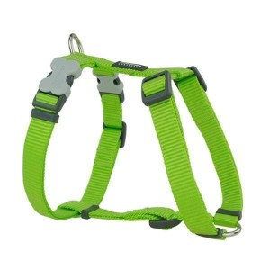 Red Dingo Sele, Lime, 56-80 cm
