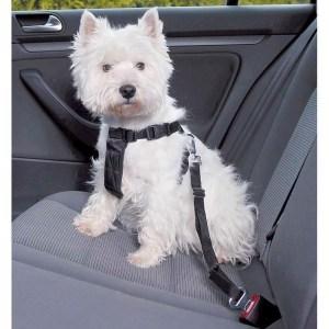 Sikkerhedssele til hunden