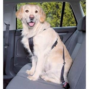 Sikkerhedssele til hunden, Medium