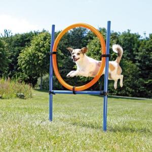 Trixie Agility ring til udendørs brug - 65 cm