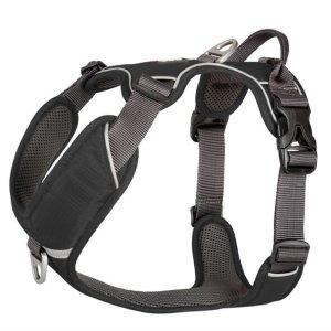 Comfort Walk Pro Harness Black - M