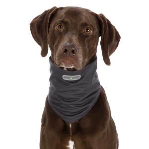 Insect Shield® Hundetørklæder - forhindrer lopper og andre insekter
