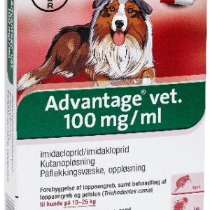 Advantage Hund 10-25 kg