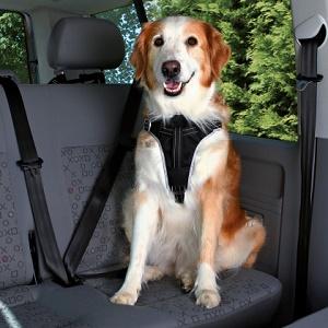 Dog protect sikkerhedssele, vælg størrelse S/M