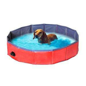 Hunde swimming Pool-L