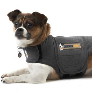 Thundershirt den bedste løsning mod angst hos hunde-S
