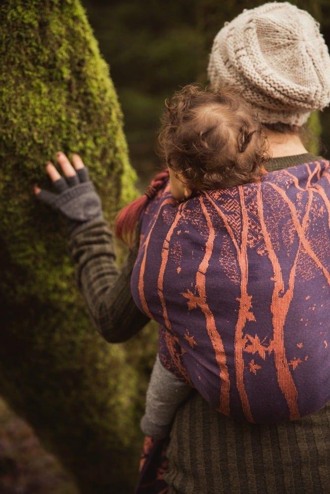smallGrizedale Twilight Birch Trees-11