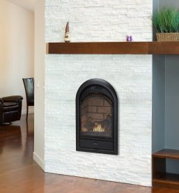 zero clearance gas fireplace insert