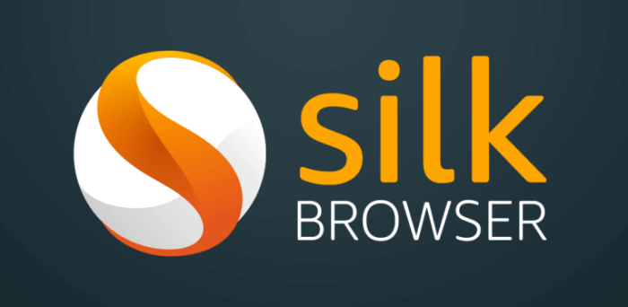 Download Silk Browser on your Firestick TV