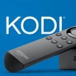 How to Install Kodi 19.0 on Firestick / Fire TV [Best Method]