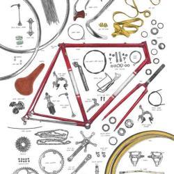 David Sparshott - The Anatomy of a Bicycle print