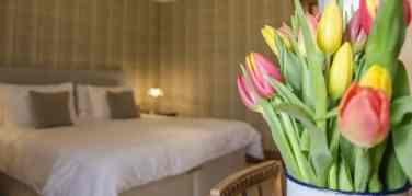 Close up of a bunch of tulips in the Harris bedroom in Firhall B&B with a kingsize bed in the background