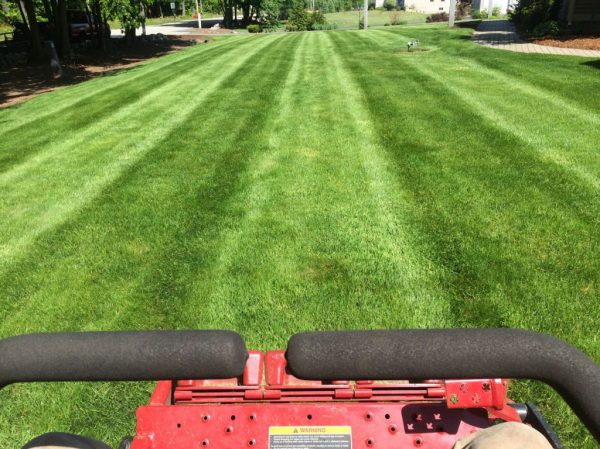 lawn mowing service homes &