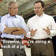 Brownbushheckjob