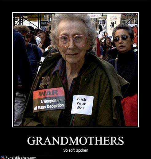 Political-pictures-grandmothers