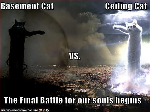 Funny-pictures-basement-cat-vs-ceiling-cat