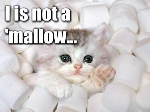I-is-not-a-mallow