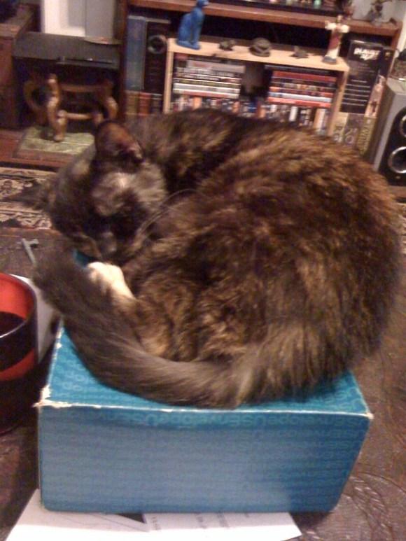 Jane on a box