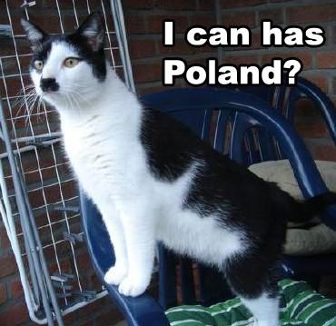 Hitler-cat2