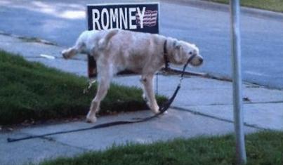 RomneyDogWhizz