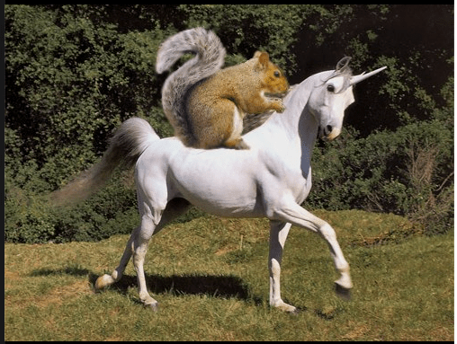 SquirrelOnUnicorn