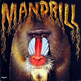Mandrill__Vinyl__4b405549534c5