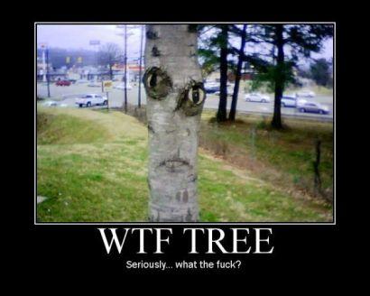 wtf_tree