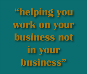 helping you work on your business not in your business